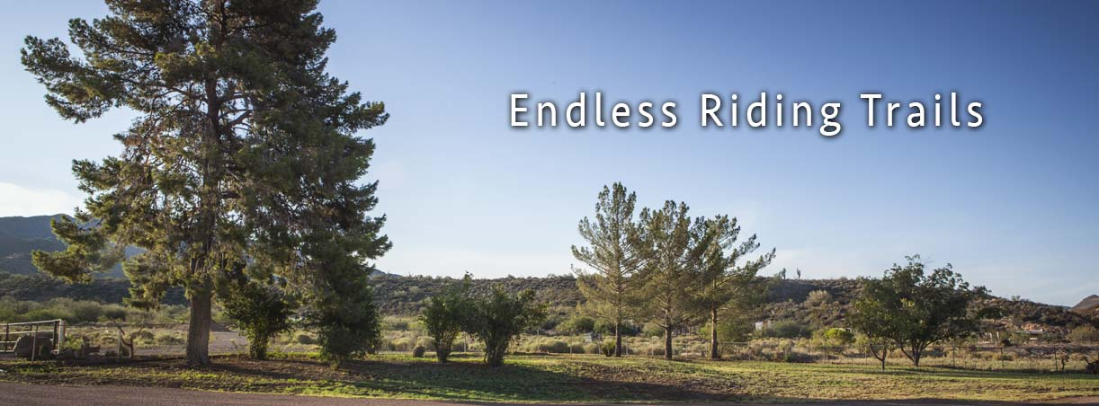 Arizona horse riding trails